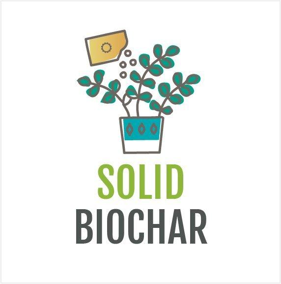 solid arti biochar